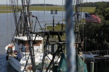 Shrimp Boats docked in St. Helena Island.