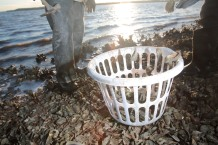 """Ed """"Lee Man"""" Atkins begins collecting oysters off the public oyster bed located near St. Helena's Island."""
