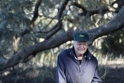 Chuck Henry sits on a favorite live oak tree on his family's land. He bought land on St. Helena Island in 1947, and he has been farming there ever since.