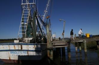 Bron Singleton, left, and James Bradley, Jr., unload shrimp to put it on ice.