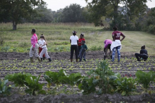 Sarà Reynolds Green, in pink, leads students as they transplant greens. From left are Green, Carolyn Durrance, Taylor Linyard, Jameah Moore, Zariah Green, Jameka Young, Janice Baker and Kalila Saunders.